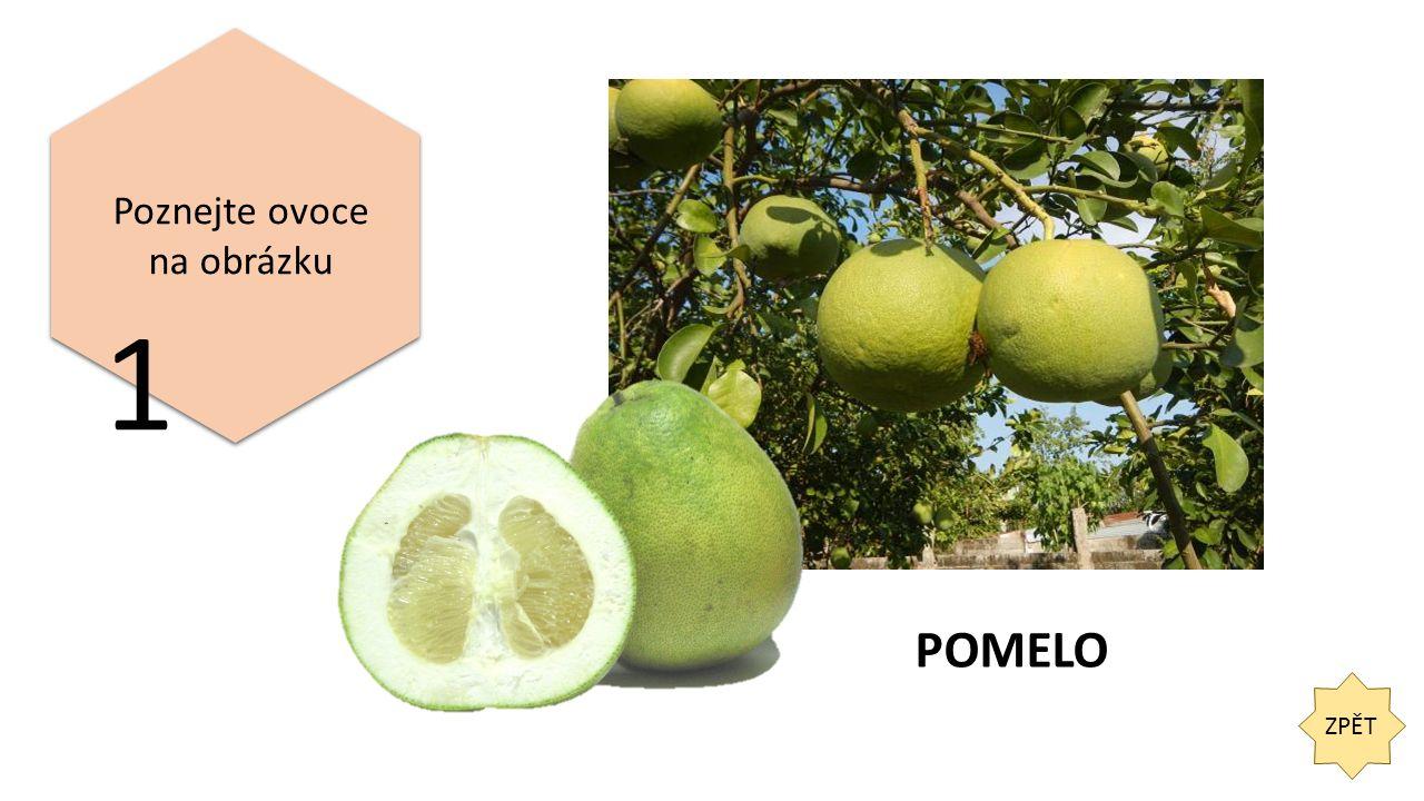 ZPĚT 2 Dle následující charakteristiky poznejte, o jaké ovoce se jedná.
