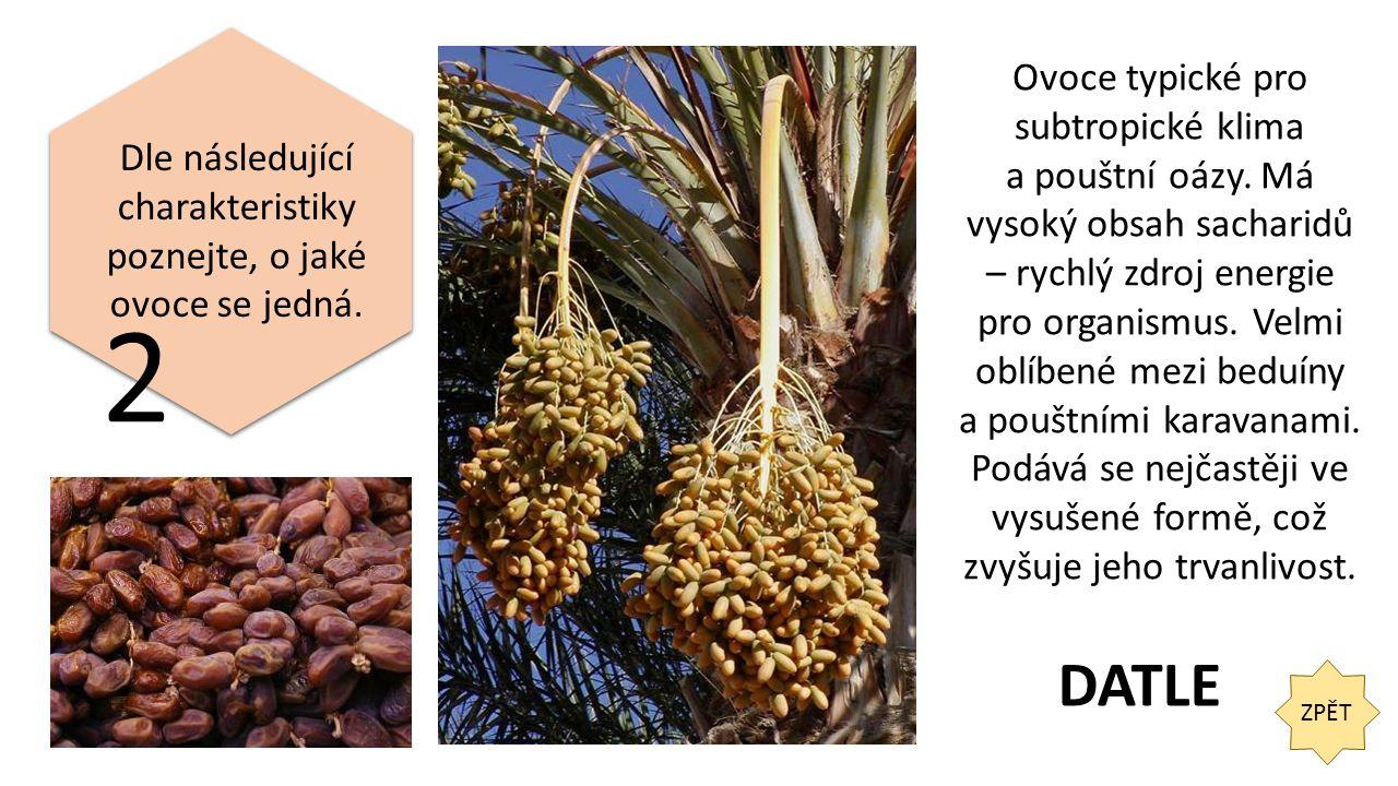 ZPĚT 13 Jaké plody rodí strom na fotografii? OLIVY