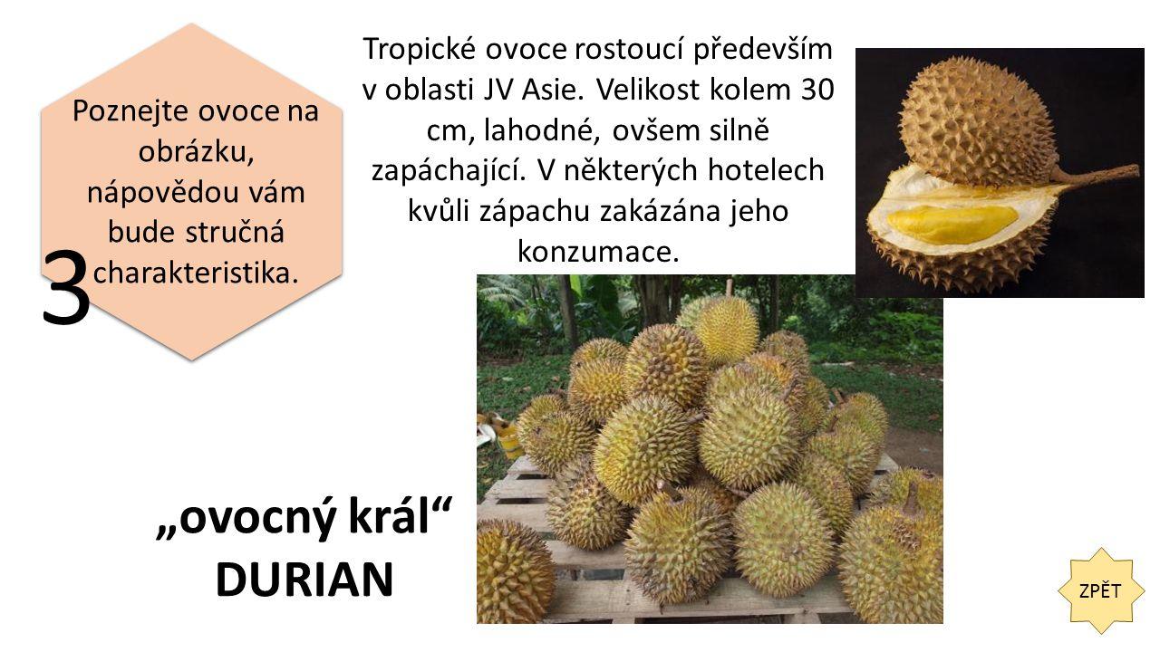 ZPĚT 3 Poznejte ovoce na obrázku, nápovědou vám bude stručná charakteristika.