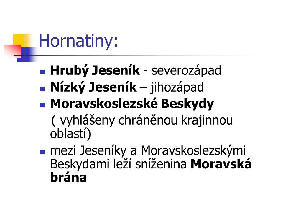 Hornatiny: Hrubý Jeseník - severozápad Nízký Jeseník – jihozápad Moravskoslezské Beskydy ( vyhlášeny chráněnou krajinnou oblastí) mezi Jeseníky a Moravskoslezskými Beskydami leží sníženina Moravská brána