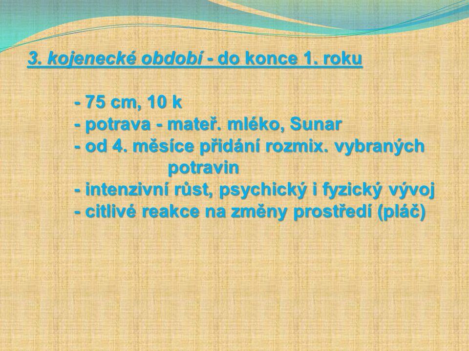 Autorem materiálu a všech jeho částí, není-li uvedeno jinak, je Mgr. Lenka Kolstrunková.