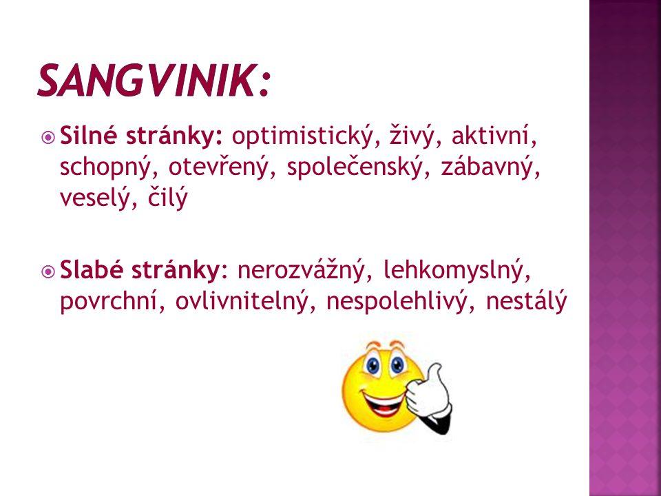  Silné stránky: optimistický, živý, aktivní, schopný, otevřený, společenský, zábavný, veselý, čilý  Slabé stránky: nerozvážný, lehkomyslný, povrchní, ovlivnitelný, nespolehlivý, nestálý