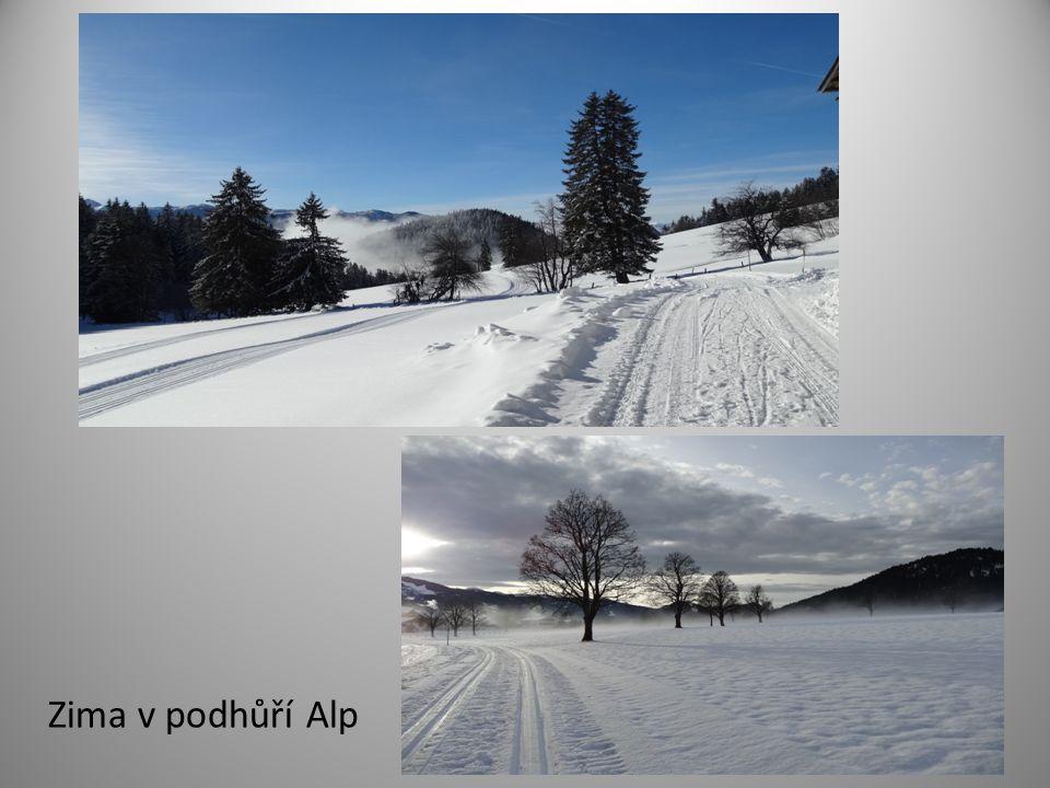 Zima v podhůří Alp