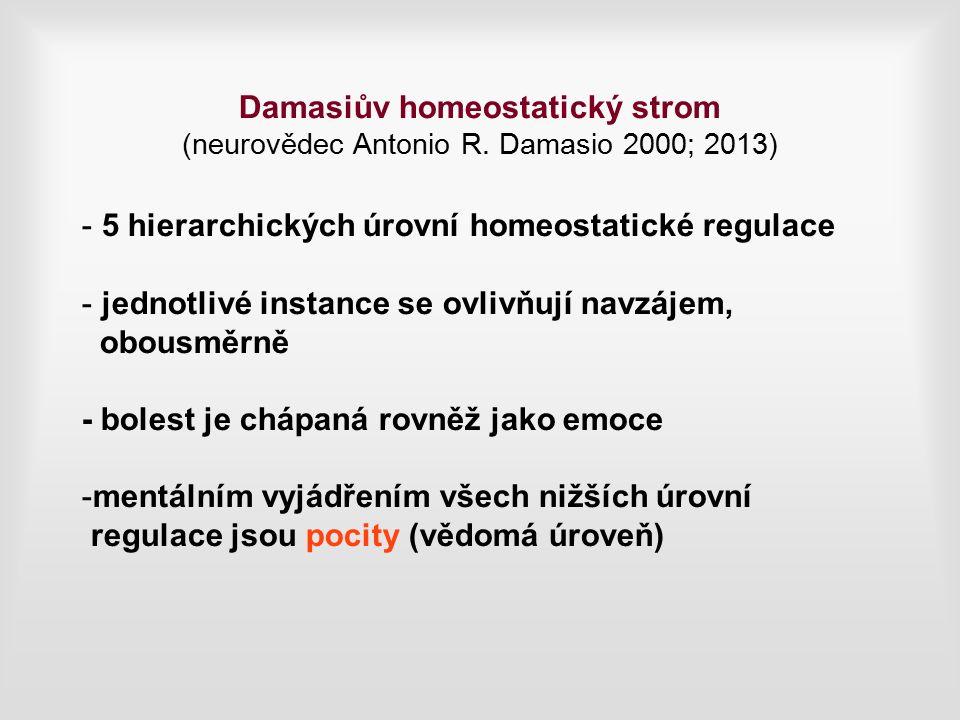 Damasiův homeostatický strom (neurovědec Antonio R.