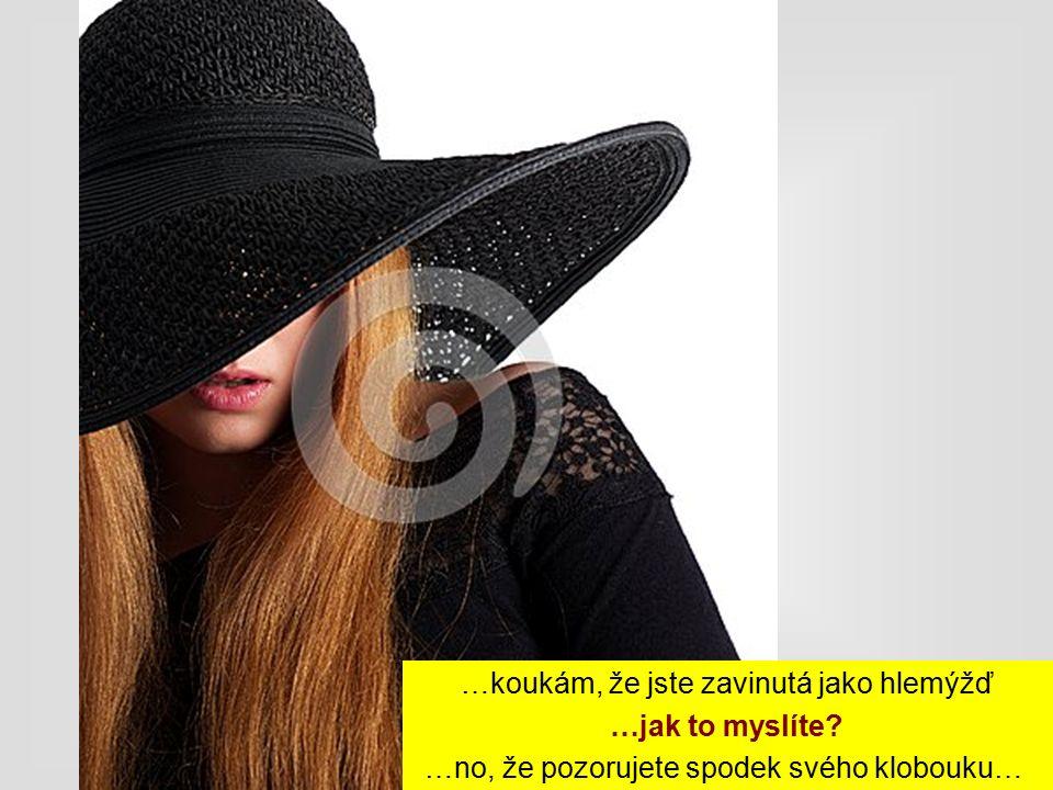 …koukám, že jste zavinutá jako hlemýžď …jak to myslíte? …no, že pozorujete spodek svého klobouku…