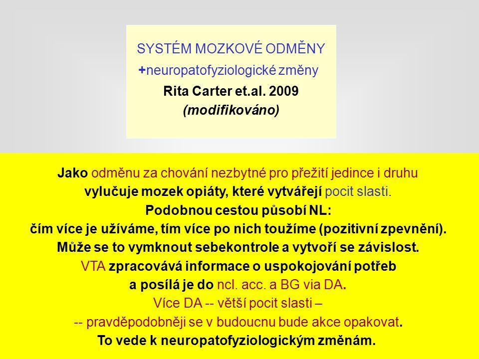 SYSTÉM MOZKOVÉ ODMĚNY +neuropatofyziologické změny Rita Carter et.al.