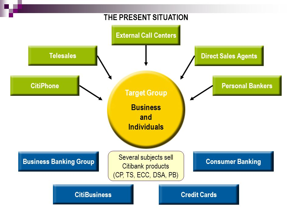 THE PRESENT SITUATION Target Group Business and Individuals Business Banking Group Consumer Banking Credit Cards CitiBusiness External Call CentersDirect Sales AgentsTelesales Personal BankersCitiPhone Several subjects sell Citibank products (CP, TS, ECC, DSA, PB)