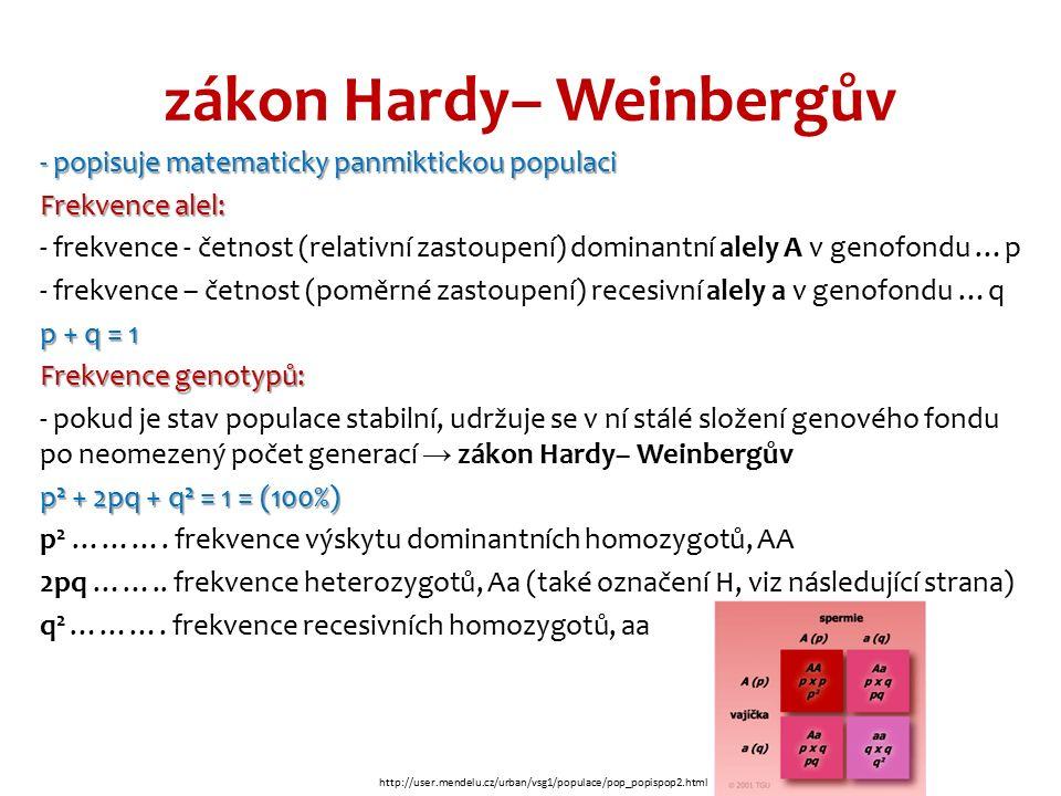 zákon Hardy– Weinbergův - popisuje matematicky panmiktickou populaci Frekvence alel: - frekvence - četnost (relativní zastoupení) dominantní alely A v genofondu …p - frekvence – četnost (poměrné zastoupení) recesivní alely a v genofondu …q p + q = 1 Frekvence genotypů: - pokud je stav populace stabilní, udržuje se v ní stálé složení genového fondu po neomezený počet generací → zákon Hardy– Weinbergův p 2 + 2pq + q 2 = 1 = (100%) p 2 ……….