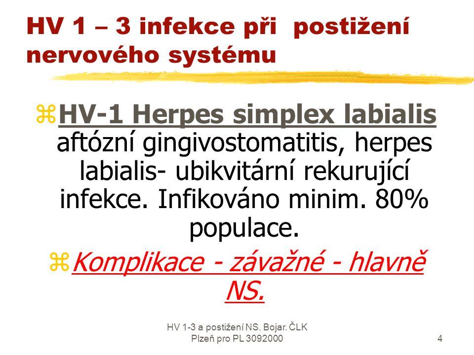 HV 1-3 a postižení NS.Bojar. ČLK Plzeň pro PL 309200024 Herpetické infekce v ordinaci PL- Prakt.