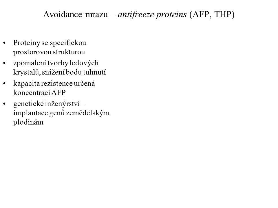 Avoidance mrazu – antifreeze proteins (AFP, THP) Proteiny se specifickou prostorovou strukturou zpomalení tvorby ledových krystalů, snížení bodu tuhnutí kapacita rezistence určená koncentrací AFP genetické inženýrství – implantace genů zemědělským plodinám