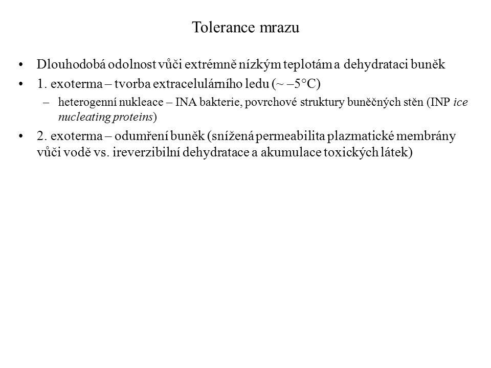 Tolerance mrazu Dlouhodobá odolnost vůči extrémně nízkým teplotám a dehydrataci buněk 1.