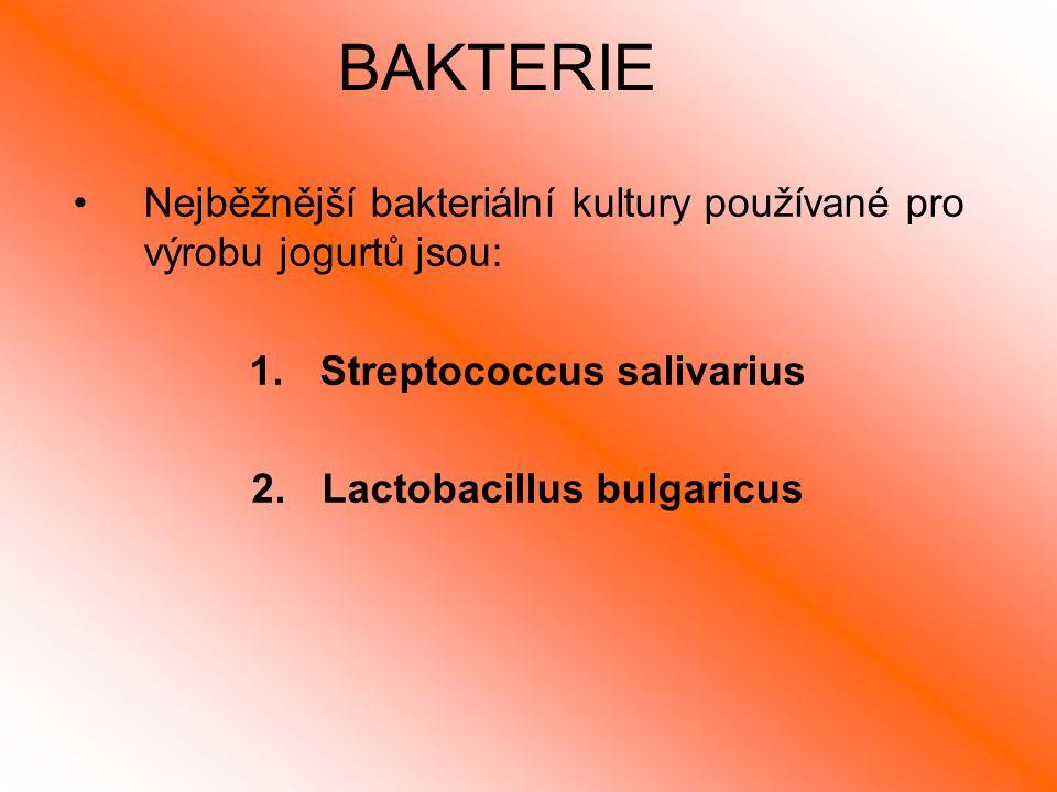 BAKTERIE Nejběžnější bakteriální kultury používané pro výrobu jogurtů jsou: 1.Streptococcus salivarius 2.Lactobacillus bulgaricus