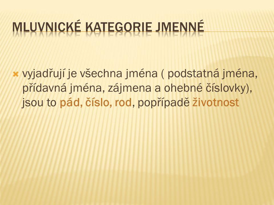  1.Které mluvnické kategorie vyjadřují jména.  2.