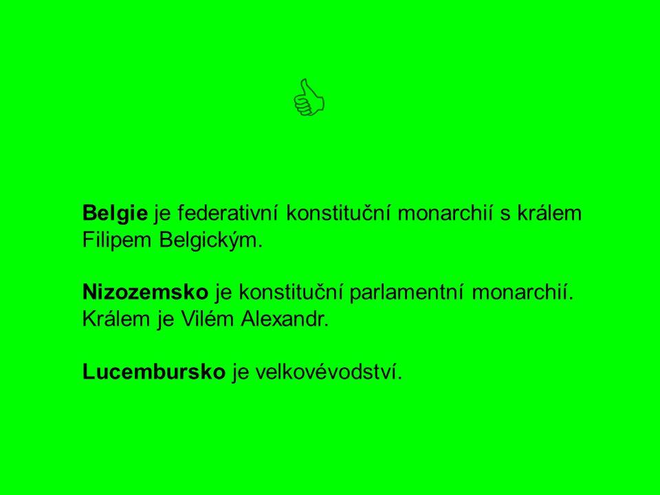 Belgie je federativní konstituční monarchií s králem Filipem Belgickým.