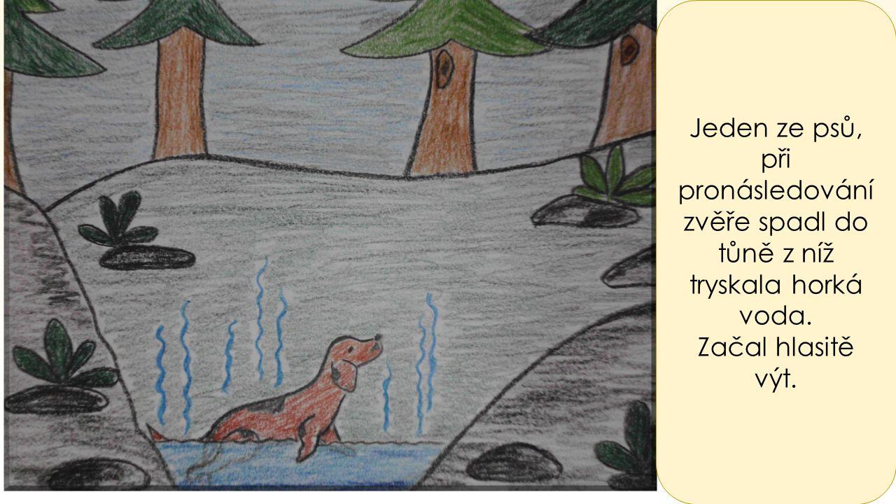 Jeden ze psů, při pronásledování zvěře spadl do tůně z níž tryskala horká voda. Začal hlasitě výt.