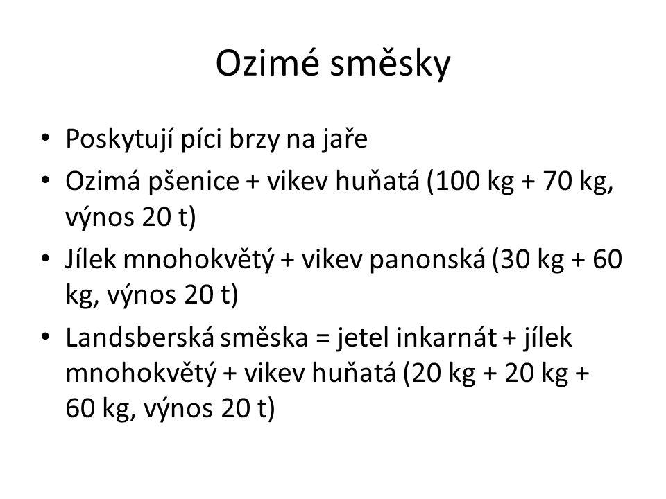 Ozimé směsky Poskytují píci brzy na jaře Ozimá pšenice + vikev huňatá (100 kg + 70 kg, výnos 20 t) Jílek mnohokvětý + vikev panonská (30 kg + 60 kg, výnos 20 t) Landsberská směska = jetel inkarnát + jílek mnohokvětý + vikev huňatá (20 kg + 20 kg + 60 kg, výnos 20 t)