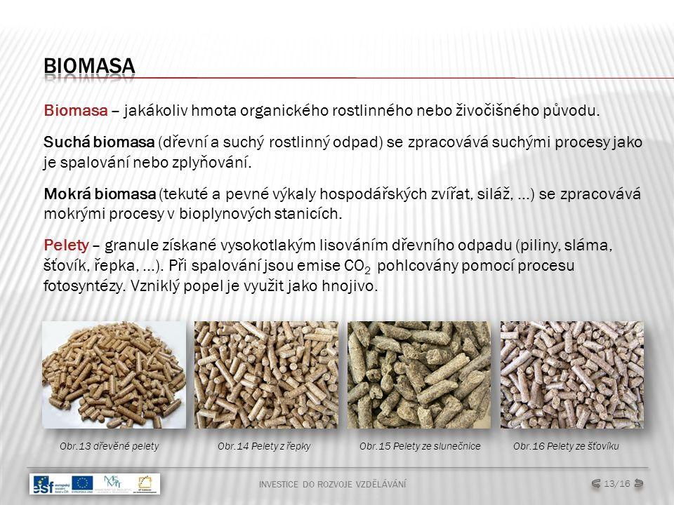 INVESTICE DO ROZVOJE VZDĚLÁVÁNÍ 13/16 Biomasa – jakákoliv hmota organického rostlinného nebo živočišného původu. Suchá biomasa (dřevní a suchý rostlin