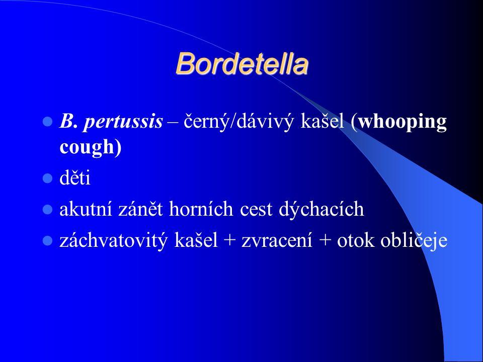 Bordetella B. pertussis – černý/dávivý kašel (whooping cough) děti akutní zánět horních cest dýchacích záchvatovitý kašel + zvracení + otok obličeje