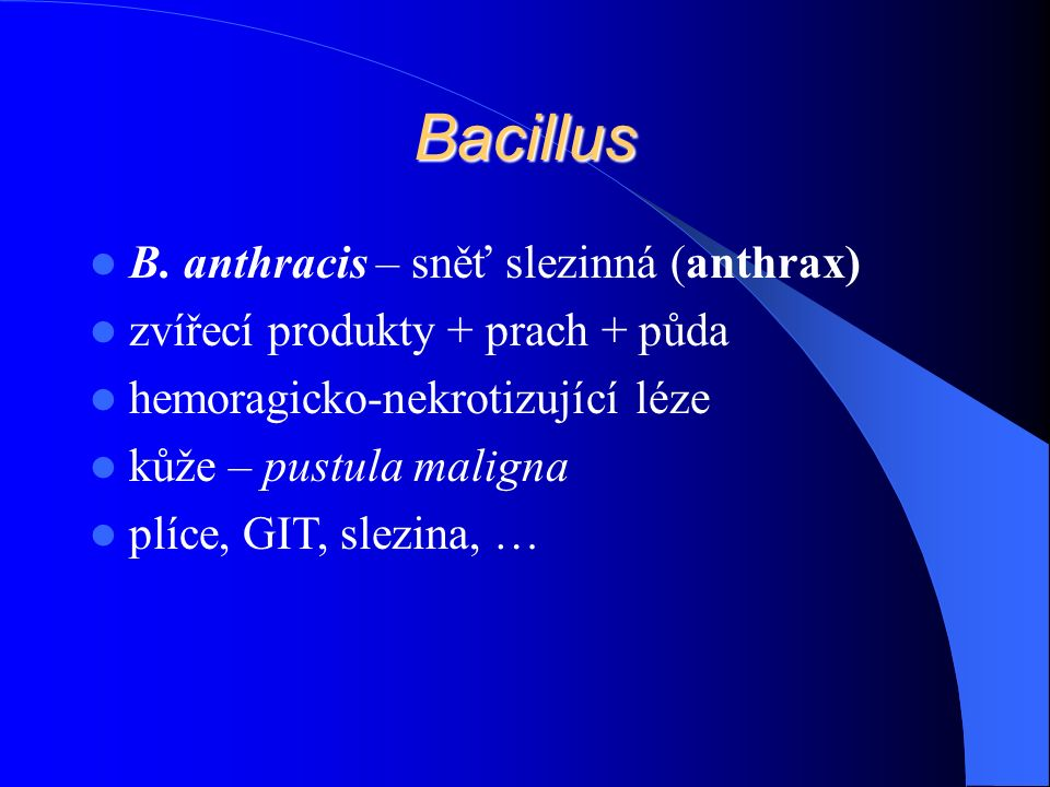 Bacillus B.