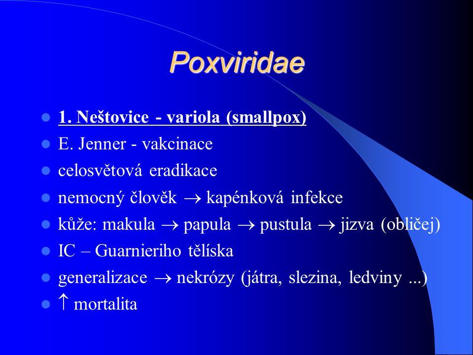 Poxviridae 1. Neštovice - variola (smallpox) E.