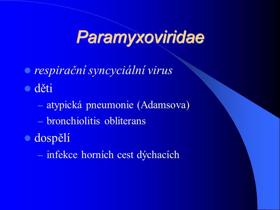 Paramyxoviridae respirační syncyciální virus děti – atypická pneumonie (Adamsova) – bronchiolitis obliterans dospělí – infekce horních cest dýchacích