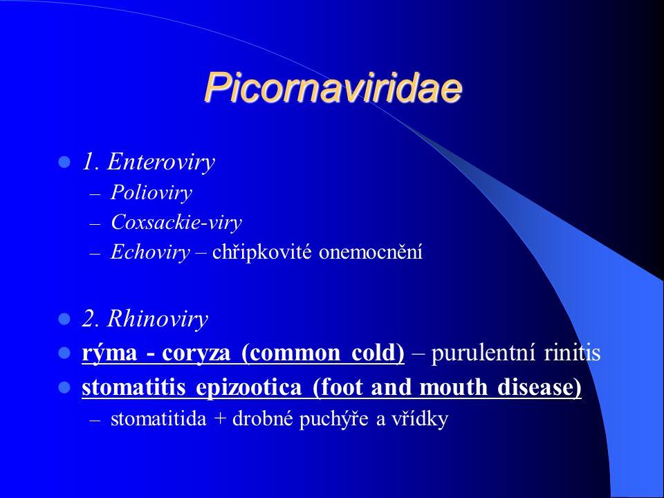 Picornaviridae 1. Enteroviry – Polioviry – Coxsackie-viry – Echoviry – chřipkovité onemocnění 2.