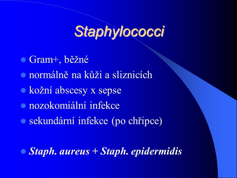 Staphylococci Gram+, běžné normálně na kůži a sliznicích kožní abscesy x sepse nozokomiální infekce sekundární infekce (po chřipce) Staph.
