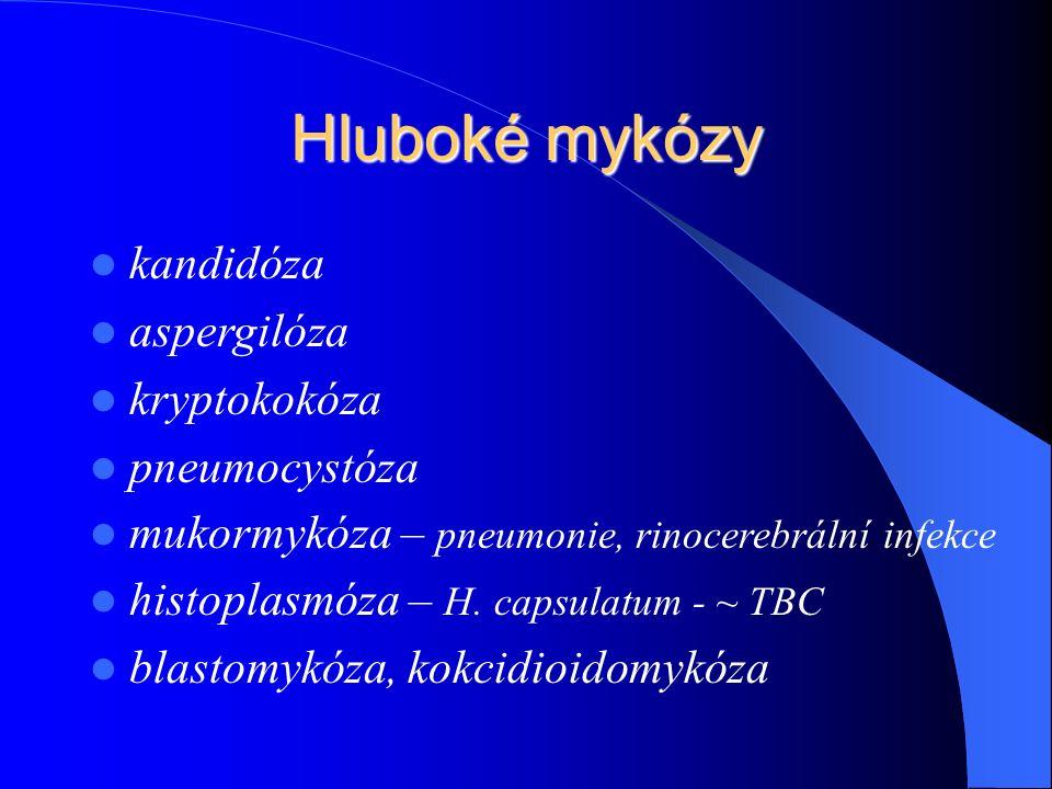 Hluboké mykózy kandidóza aspergilóza kryptokokóza pneumocystóza mukormykóza – pneumonie, rinocerebrální infekce histoplasmóza – H.