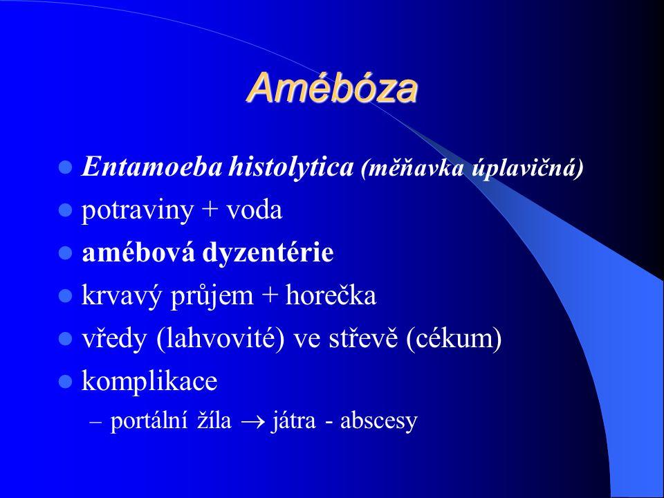 Amébóza Entamoeba histolytica (měňavka úplavičná) potraviny + voda amébová dyzentérie krvavý průjem + horečka vředy (lahvovité) ve střevě (cékum) komplikace – portální žíla  játra - abscesy