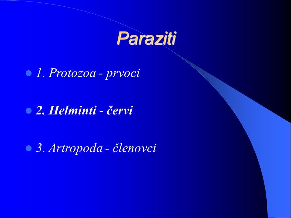 Paraziti 1. Protozoa - prvoci 2. Helminti - červi 3. Artropoda - členovci