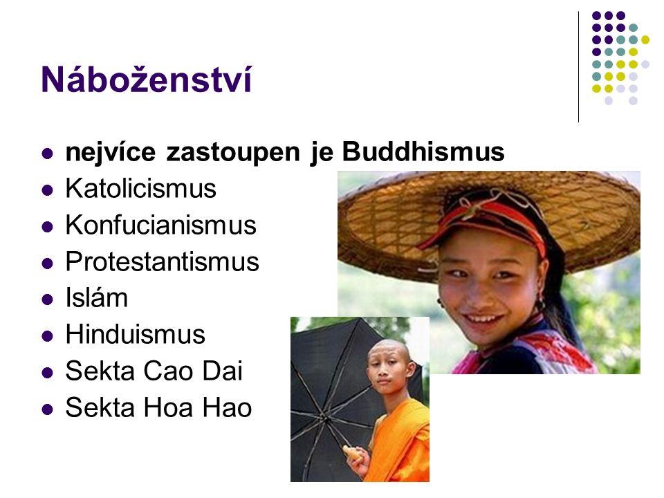 Náboženství nejvíce zastoupen je Buddhismus Katolicismus Konfucianismus Protestantismus Islám Hinduismus Sekta Cao Dai Sekta Hoa Hao