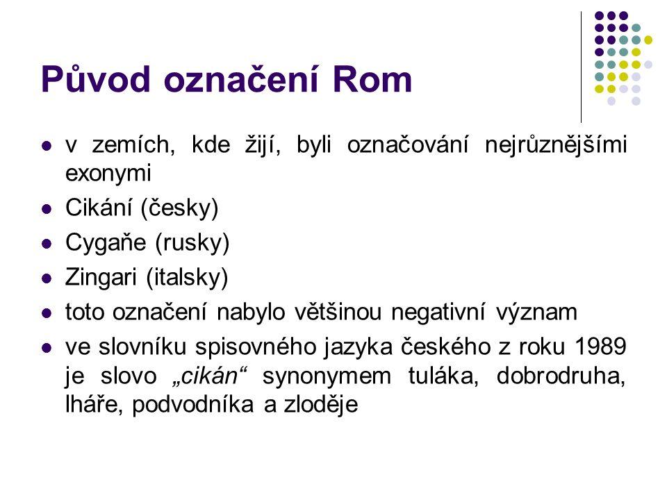 Původ označení Rom v zemích, kde žijí, byli označování nejrůznějšími exonymi Cikání (česky) Cygaňe (rusky) Zingari (italsky) toto označení nabylo větš