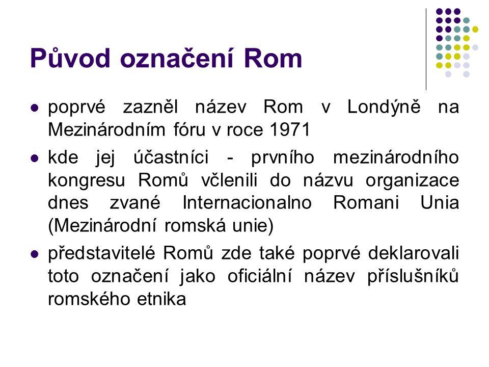 Původ označení Rom poprvé zazněl název Rom v Londýně na Mezinárodním fóru v roce 1971 kde jej účastníci - prvního mezinárodního kongresu Romů včlenili do názvu organizace dnes zvané Internacionalno Romani Unia (Mezinárodní romská unie) představitelé Romů zde také poprvé deklarovali toto označení jako oficiální název příslušníků romského etnika