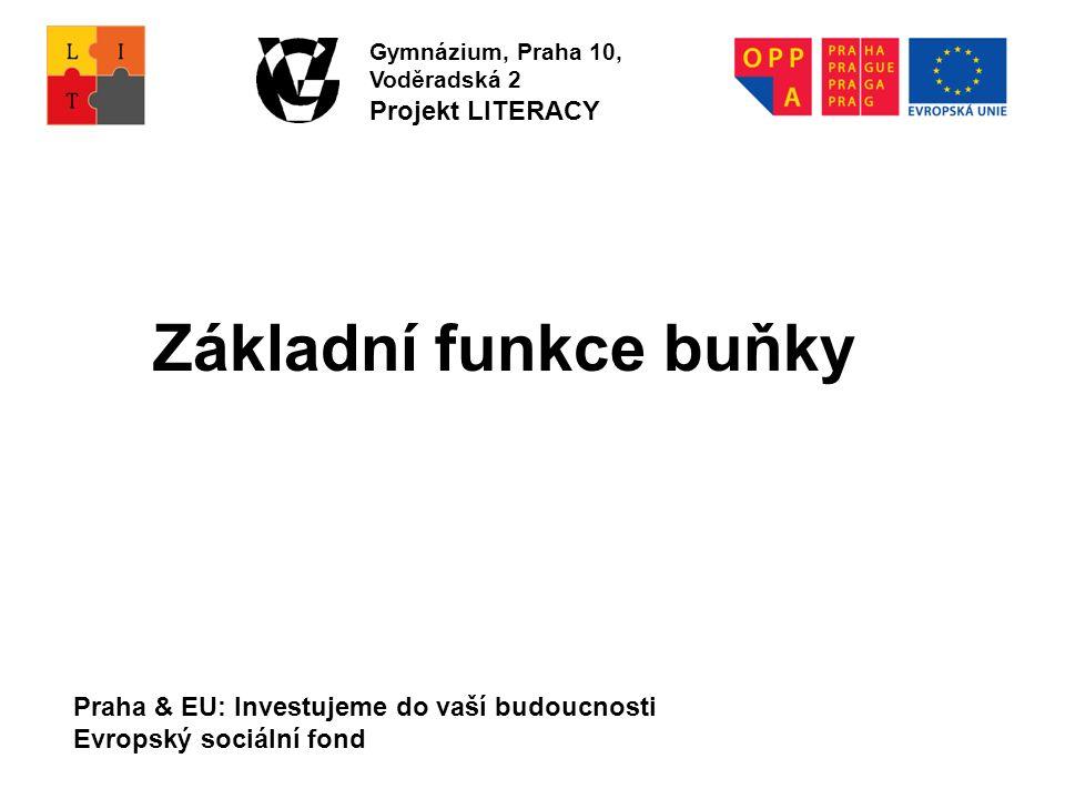 Praha & EU: Investujeme do vaší budoucnosti Evropský sociální fond Gymnázium, Praha 10, Voděradská 2 Projekt LITERACY Základní funkce buňky