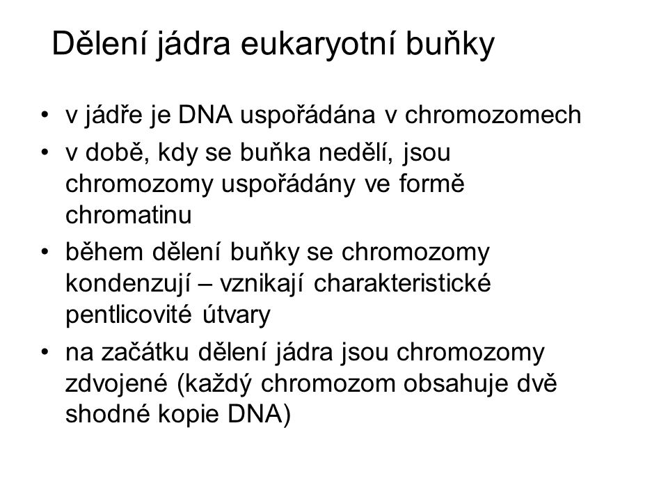 Dělení jádra eukaryotní buňky v jádře je DNA uspořádána v chromozomech v době, kdy se buňka nedělí, jsou chromozomy uspořádány ve formě chromatinu během dělení buňky se chromozomy kondenzují – vznikají charakteristické pentlicovité útvary na začátku dělení jádra jsou chromozomy zdvojené (každý chromozom obsahuje dvě shodné kopie DNA)