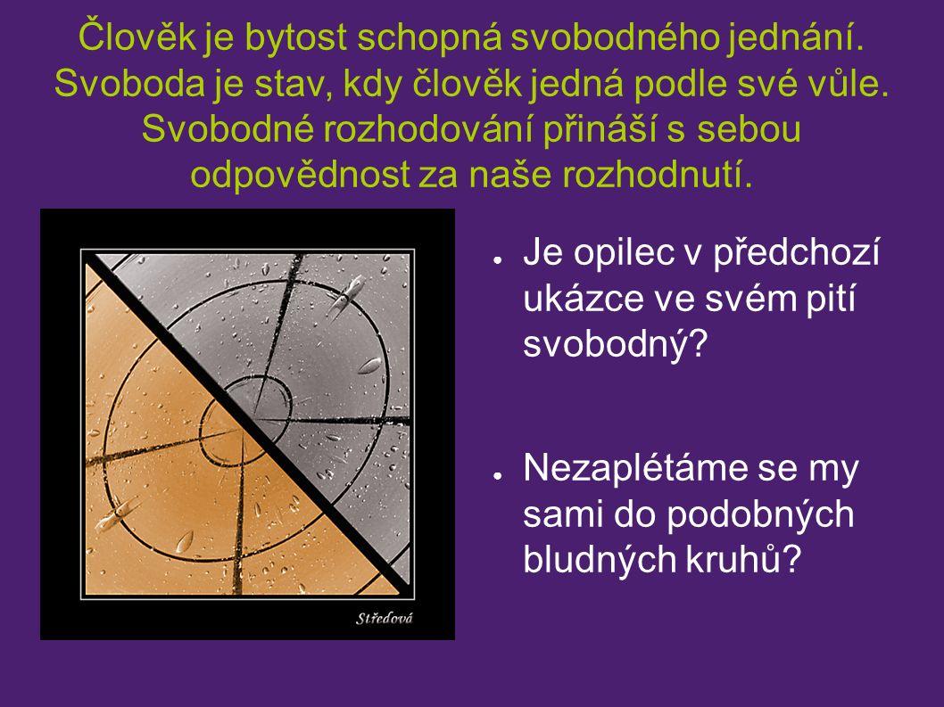Zdroje: http://i3.cn.cz/1205238713_Foto.jpg http://www.kromeriz.cz/images/clanky/malov5(2)_sz200_195.jpg http://img.fotoalba.centrum.cz/img2/285/17410285_4.jpg