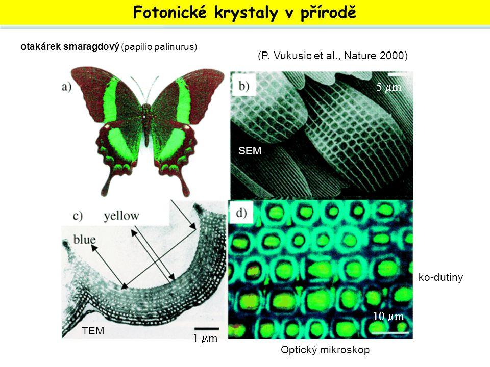Fotonické krystaly v přírodě SEM otakárek smaragdový (papilio palinurus) SEM TEM Optický mikroskop 5 m5 m 1 m1 m 10  m (P. Vukusic et al., Nature