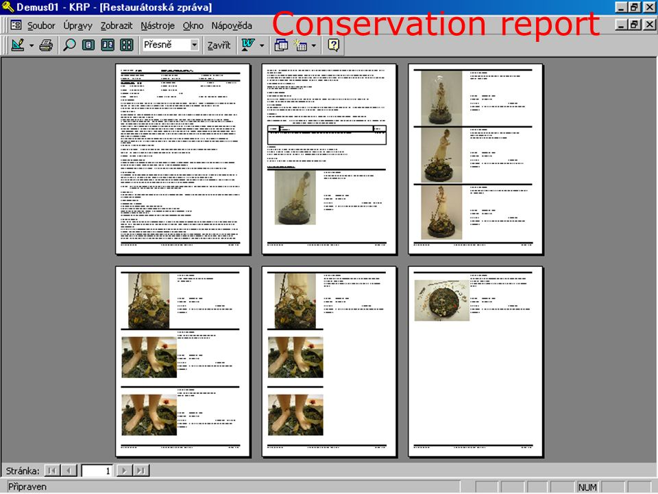 14 Conservation report