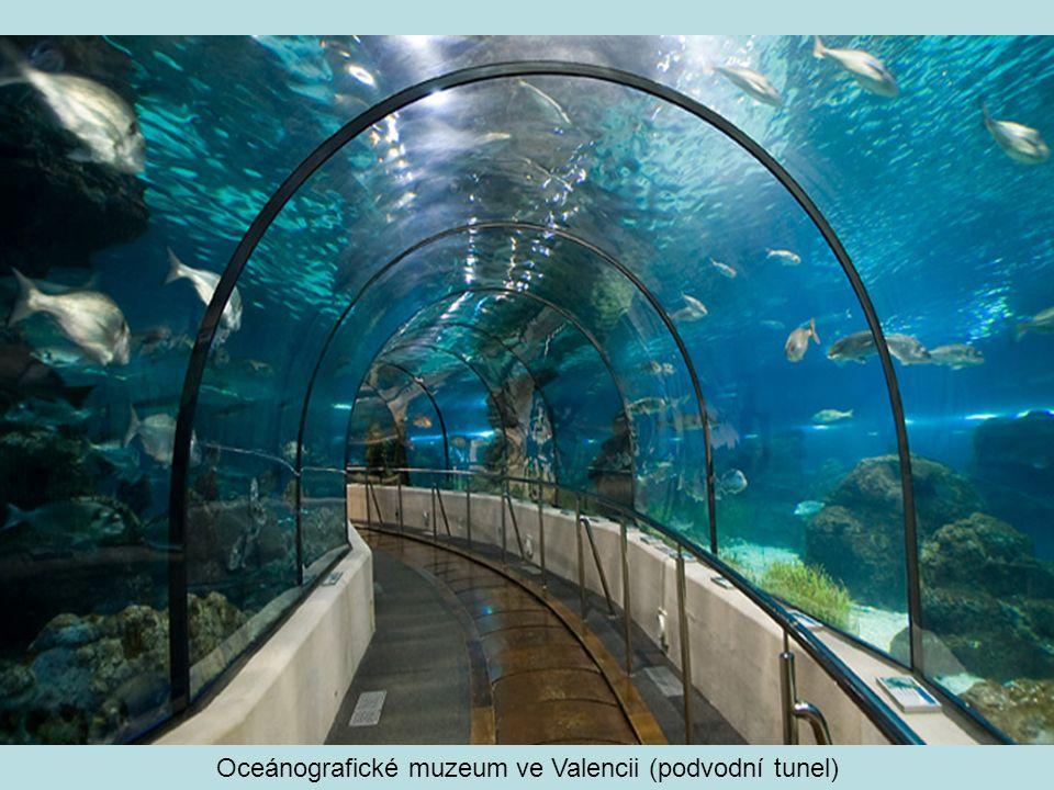 Oceánografické muzeum ve Valencii (podvodní tunel)