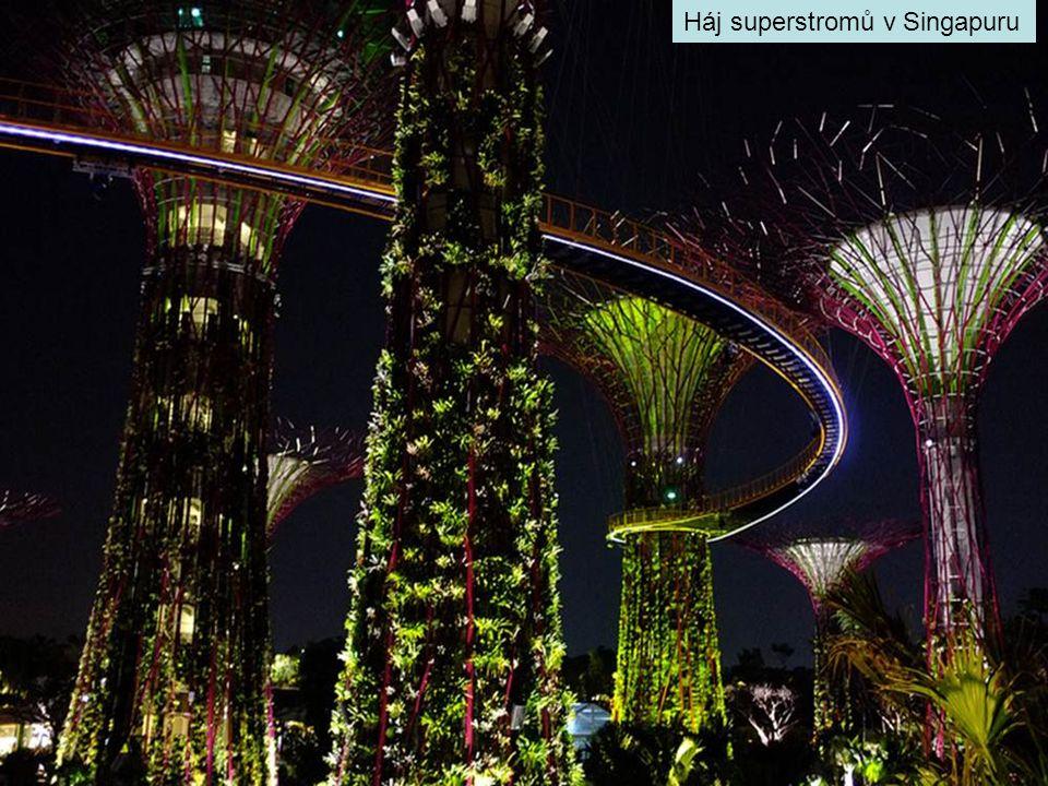 Háj superstromů v Singapuru