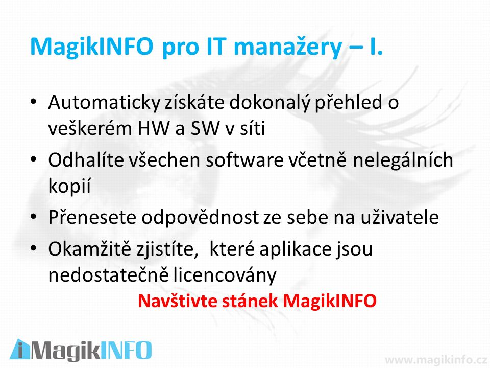 MagikINFO pro IT manažery – I.