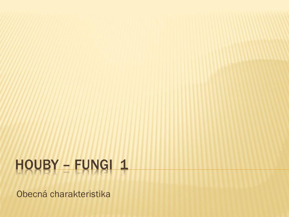 NÁZEV ŠKOLY : Gymnázium Lovosice, Sady pionýrů 600/6 ČÍSLO PROJEKTU : CZ.1.07/1.5.00/34.1073 NÁZEV MATERIÁLU : VY_32_INOVACE_7A_02_TEMA Houby 1 TÉMA SADY : Biologie pro 1.