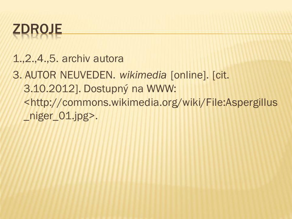 1.,2.,4.,5. archiv autora 3. AUTOR NEUVEDEN. wikimedia [online].