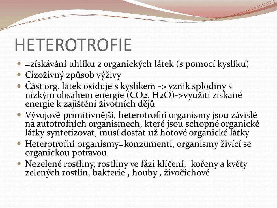 HETEROTROFIE =získávání uhlíku z organických látek (s pomocí kyslíku) Cizoživný způsob výživy Část org.