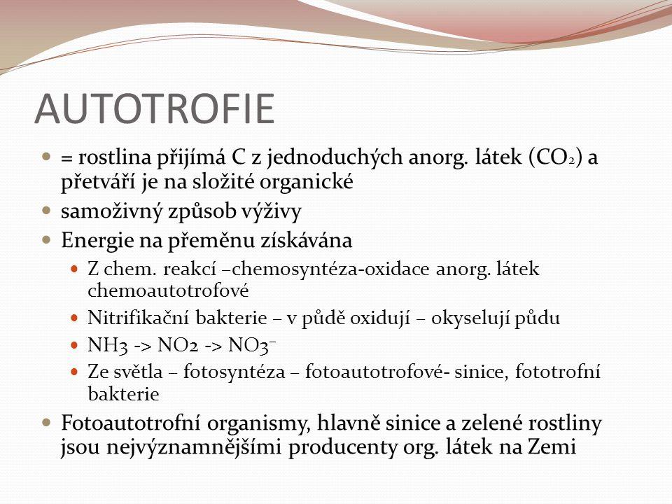AUTOTROFIE = rostlina přijímá C z jednoduchých anorg.