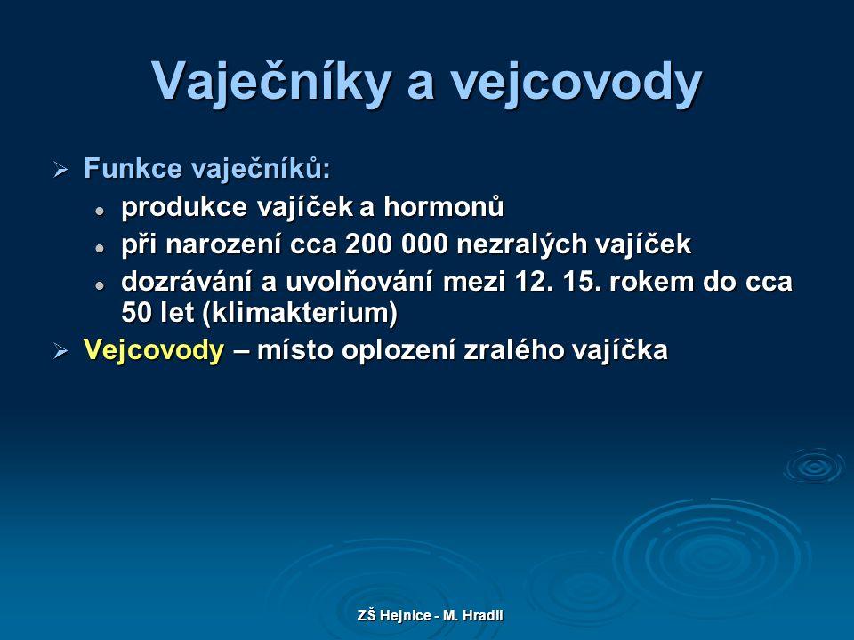 ZŠ Hejnice - M. Hradil Vaječníky a vejcovody Obr.2
