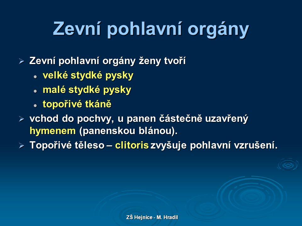 ZŠ Hejnice - M.