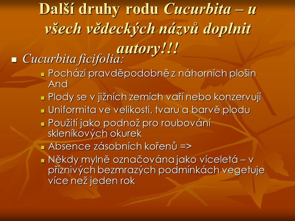 Další druhy rodu Cucurbita – u všech vědeckých názvů doplnit autory!!.