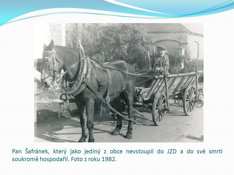Pan Šafránek, který jako jediný z obce nevstoupil do JZD a do své smrti soukromě hospodařil. Foto z roku 1982.