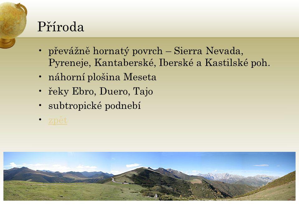 Příroda převážně hornatý povrch – Sierra Nevada, Pyreneje, Kantaberské, Iberské a Kastilské poh. náhorní plošina Meseta řeky Ebro, Duero, Tajo subtrop